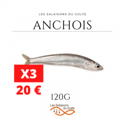 Anchois x3